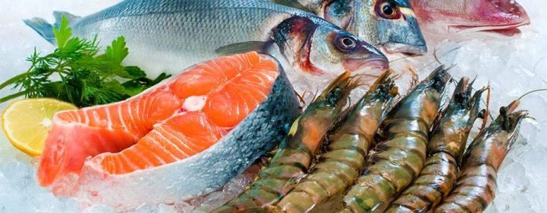 salmão, frutos do mar