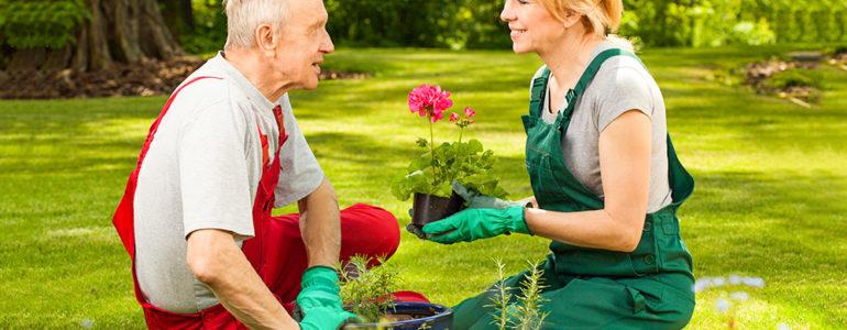 jardinagem alzheimer